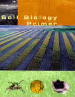 Soil Biology Primer Cover graphic