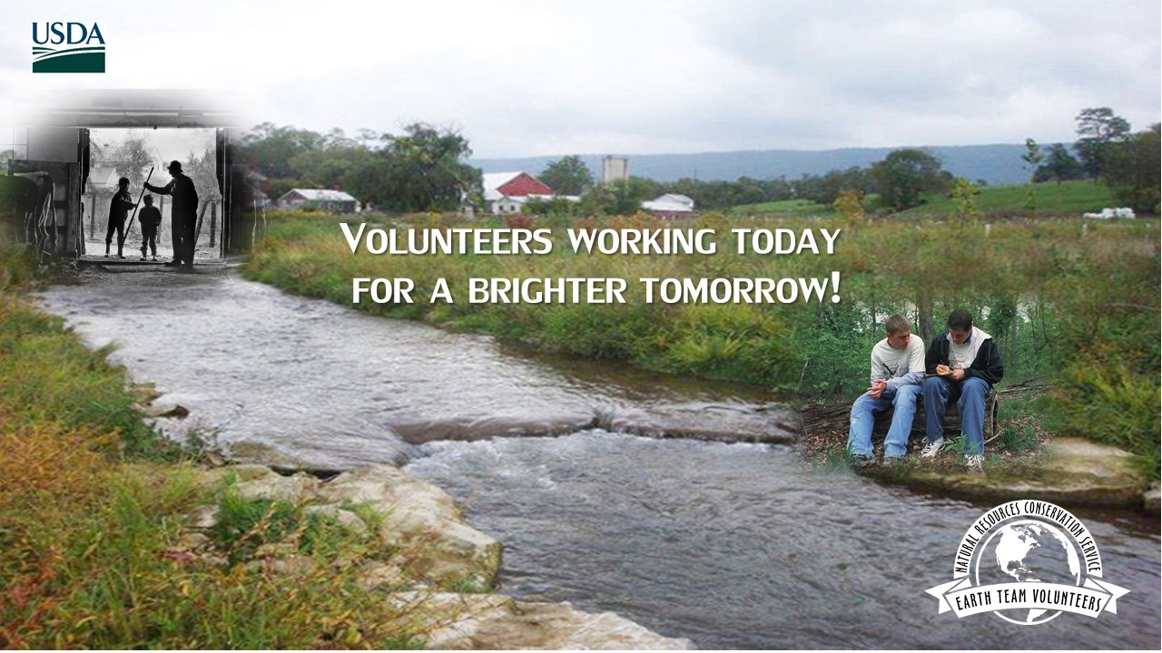 Volunteers Working Today for a Brighter Tomorrow