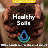 NRCS-HEALTHY SOIL_TILE