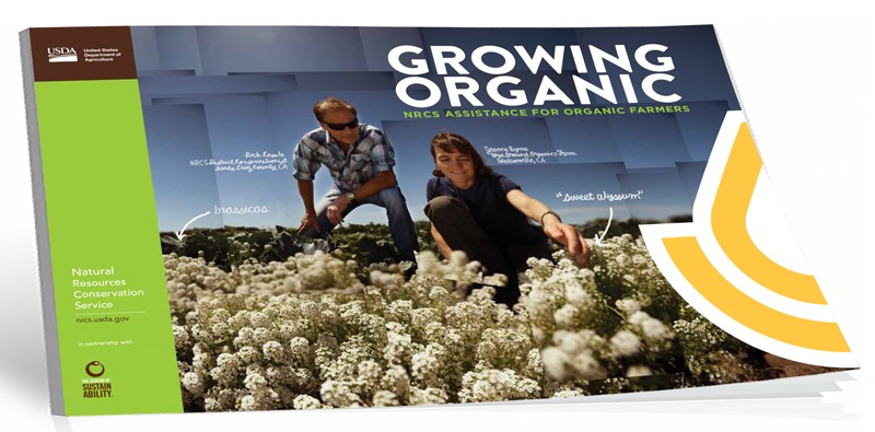 Organic Booklet New