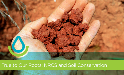 True to Our Roots: NRCS and Soil Conservation