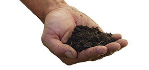 Image for Soil Facts.