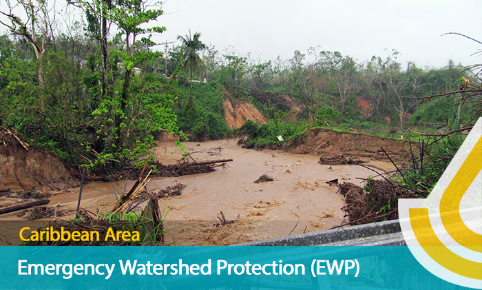 Caribbean Area Emergency Watershed Protection - flood damaged stream banks in Utuado from hurricane María.