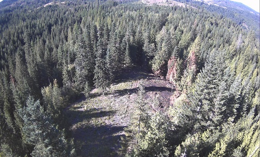 An aerial photo of the project area that was cleared & replanted. The burned area can be seen at the right of the clearing.