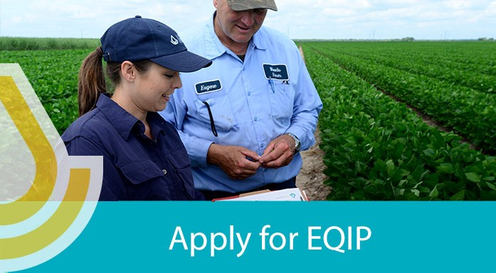 apply for eqip page banner