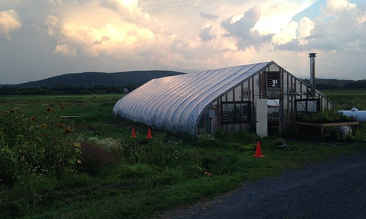 This greenhouse is shared by five farmers who collaborate and share information and resources in the Black Dirt Region of New York.