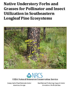 Cover of Native Understory Forbs and Grasses for Pollinator and Insect Utilization in Southeastern Longleaf Pine Ecosystems