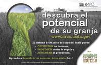 Soil Secrets Poster Spanish