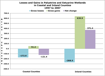 Bar chart of losses and gains in Palustrine and Estuarine wetlands, 1997 to 2007