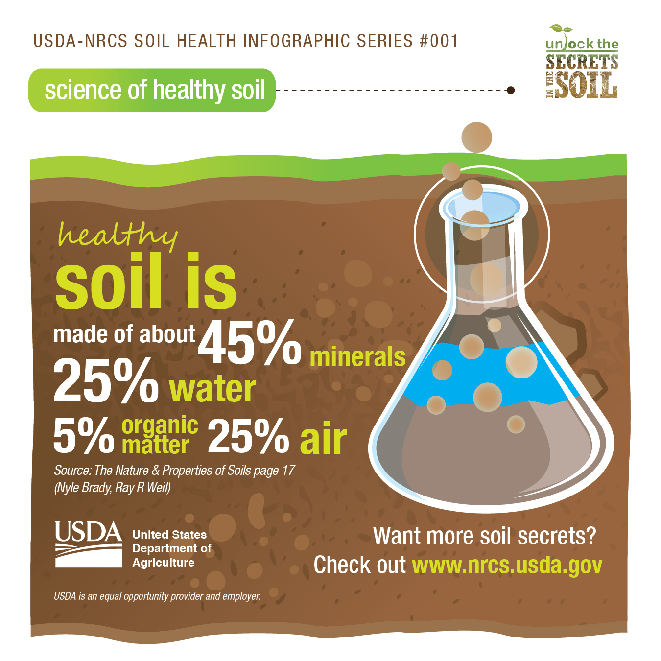 SH_InfographicSeries_SoilComposition-01