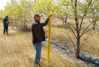 Allen Casey and Mark Jenzen measure tree height and width in arid western Kansas.