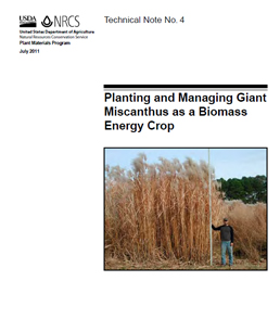 Cover of Planting and Managing Giant Miscanthus as a Biomass Crop