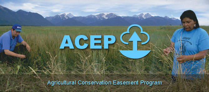 Agricultural Conservation Easement Program (ACEP)