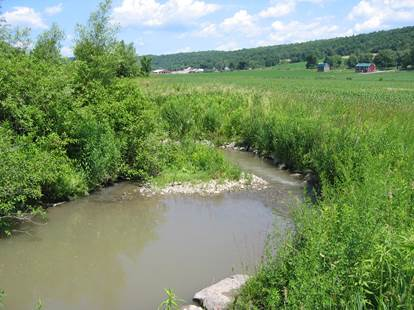 Riparian buffers installed along a stream in the Susquehanna Watershed