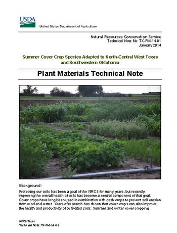 Cover of Summer Cover Crop Species Adapted to North-Central West Texas and Southwestern Oklahoma